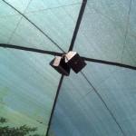 JBL Outdoor Weatherized Control Speakers